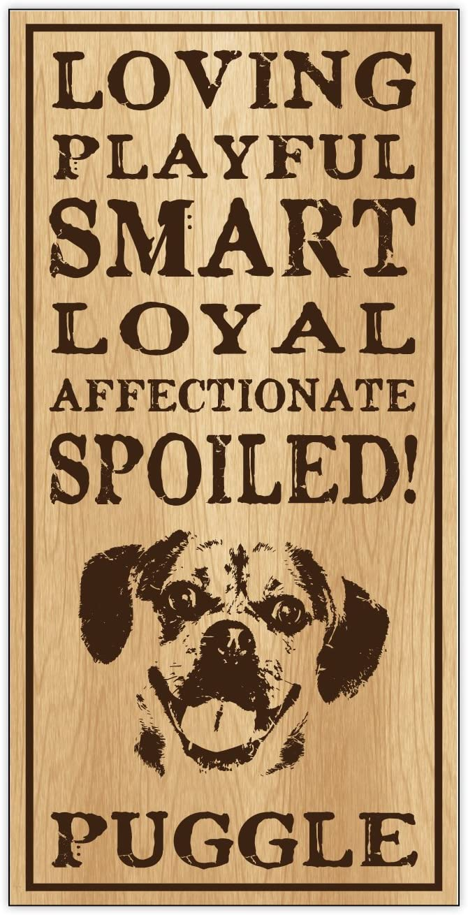 Crazy Sticker Guy Wood Dog Breed Personality Sign - Spoiled Puggle (Pug Beagle) - Home, Office, Décor, Decoration, Gifts