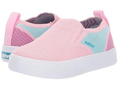Native Kids Shoes Miles 2.0 Liteknit (Toddler/Little Kid) (Lantern Pink/Hydrangea Blue/Origami Purple) Girl