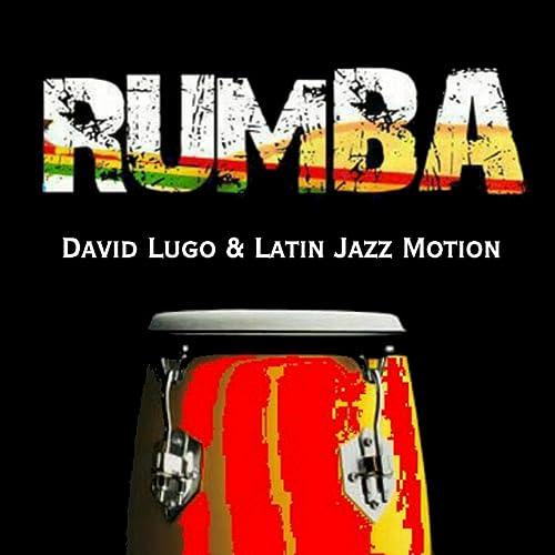 Amazon.com: Rumba: Latin Jazz Motion David Lugo: MP3 Downloads