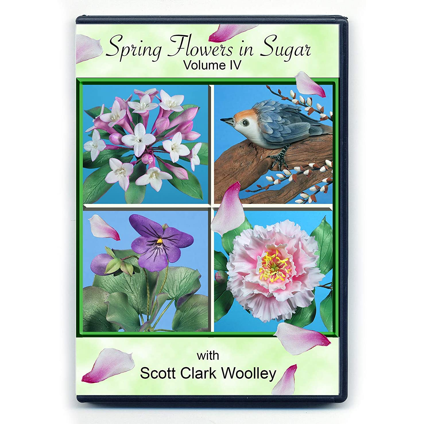 Spring Flowers in Sugar (Volume IV) with Scott Clark Woolley (NTSC DVD Format)