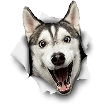 Winston & Bear 3D Hund Aufkleber - 2er-Pack - glückliche