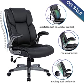 Statesville High Back Office Chair - Ergonomic Computer Desk Executive Task Swivel Chair - Adjustable Built in Lumbar Support, Tilt Angle and Flip-Up Arms for Workers & Students, Black