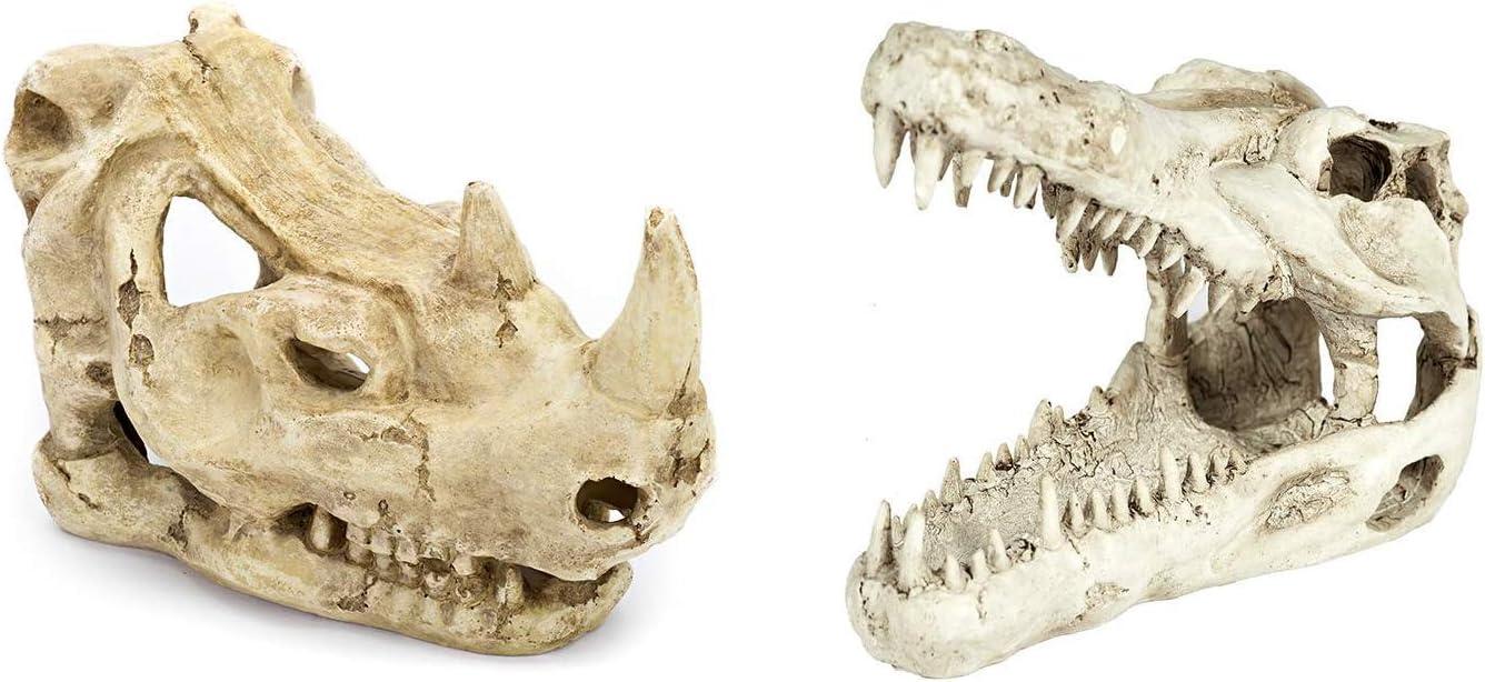 FOYO Mini Dinosaur Skull