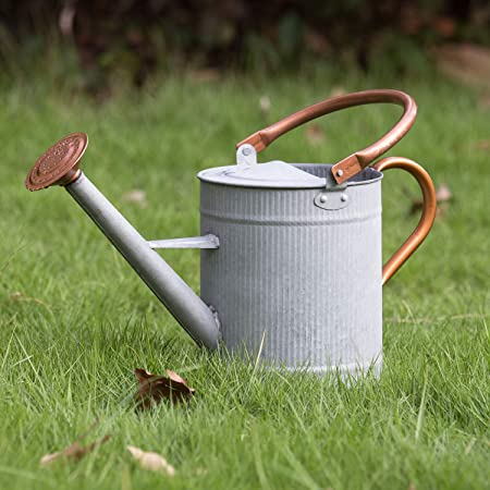 HORTICAN 1 Gallon Galvanized Watering Can Decorative Farmhouse Style Watering Can Perfect for Indoor and Outdoor Use