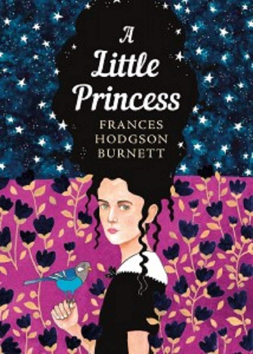 誘う照らす不運A Little Princess Illustrated (English Edition)