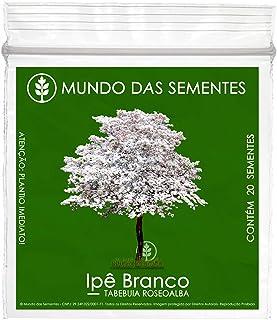 20 Sementes de Ipê Branco - Tabebuia roseoalba