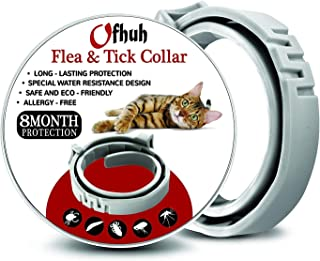 OFHUH Flea Collar for Cats - One Size Fits All - Flea and Tick Prevention Up to 8 Months - Waterproof Collar - Safe & Eco-Friendly - Hypoallergenic with 100% Natural Ingredients [Upgrade Version]