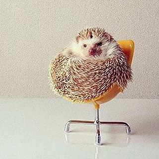 Dahey Cute Hedgehog Mini Chair Small Animal Toy Plastic Swivel Seat