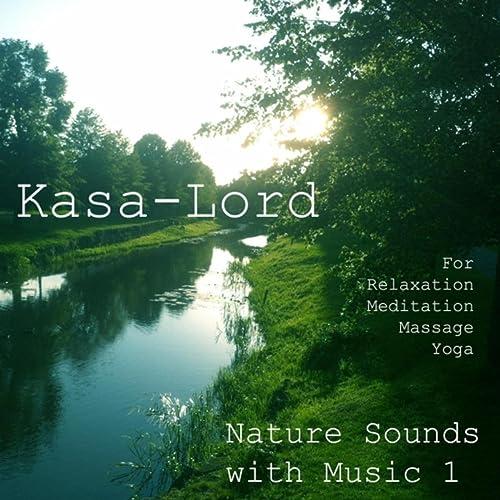 Yoga Birds in the Tree by Kasa-Lord on Amazon Music - Amazon.com