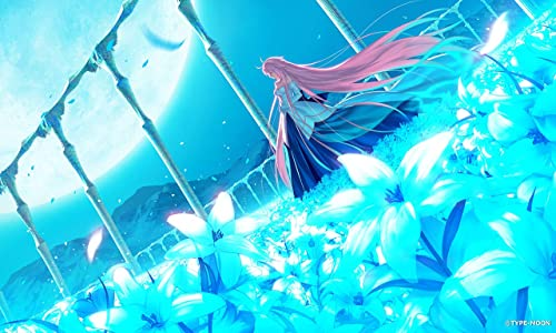 月姫 -A piece of blue glass moon- 初回限定版【同梱物】武内崇描き下ろし特装化粧箱 & 設定資料集「月姫マテリアルI -material of blue glass moon-」