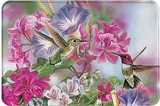 """Hummingbird Flowers Welcome Door Mat Painted Bird Rug Indoor/Outdoor Mats Welcome Decor Rug 23.6""""(L) x 15.7""""(W)"""