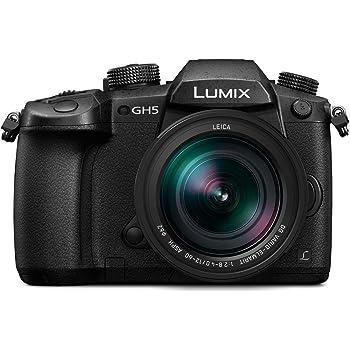 Pasonic Kompakte Systemkameras DC-GH5L, Schwarz,