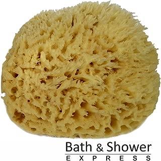 Sea Wool Sponge 6-7