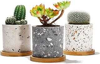 Best large cement plant pots Reviews