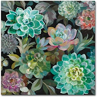 Floral Succulents v2 Crop by Danhui Nai, 14x14-Inch Canvas Wall Art