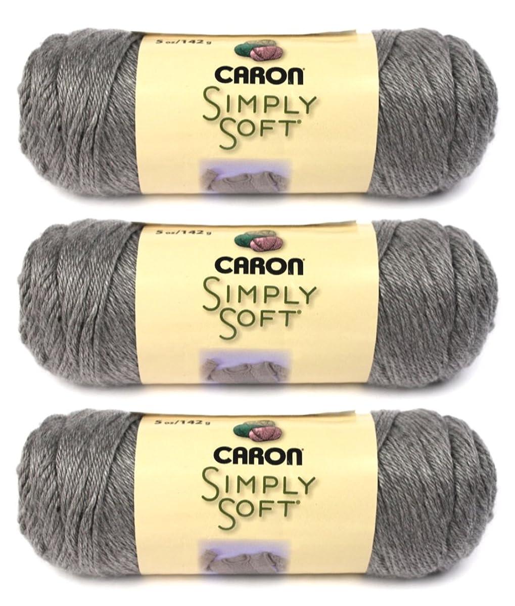 Simply Soft Heather Yarn-Soft Grey (3-pack)