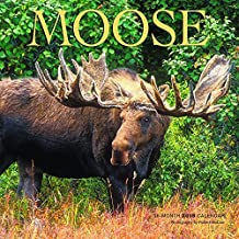By Browntrout Publishers Moose 2015 Square 12x12 Wyman (Wal) [Calendar]
