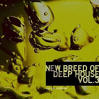 New Breed of Deep House, Vol 3: Bonus Mix 2 (Continuous DJ Mix)