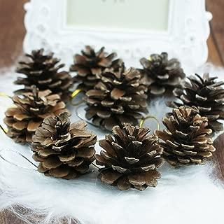 Myoffice 松かさ 松ぼっくり 装飾 クリスマスツリー飾り 9個入り (約4cm 9個入り)