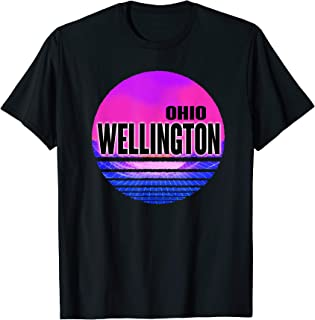 Vintage Wellington Vaporwave Ohio T-Shirt