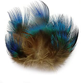 lwingflyer 100pcs Peacock Plumage Feathers for Crafts Wedding Decoration Party Accessories 1.5-3 Inch Natural Blue