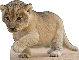 Jungle Safari Baby Lion Cub Cardboard Cutout Standee Standup Prop Party Supplies Decorations Decor Backdrop Background