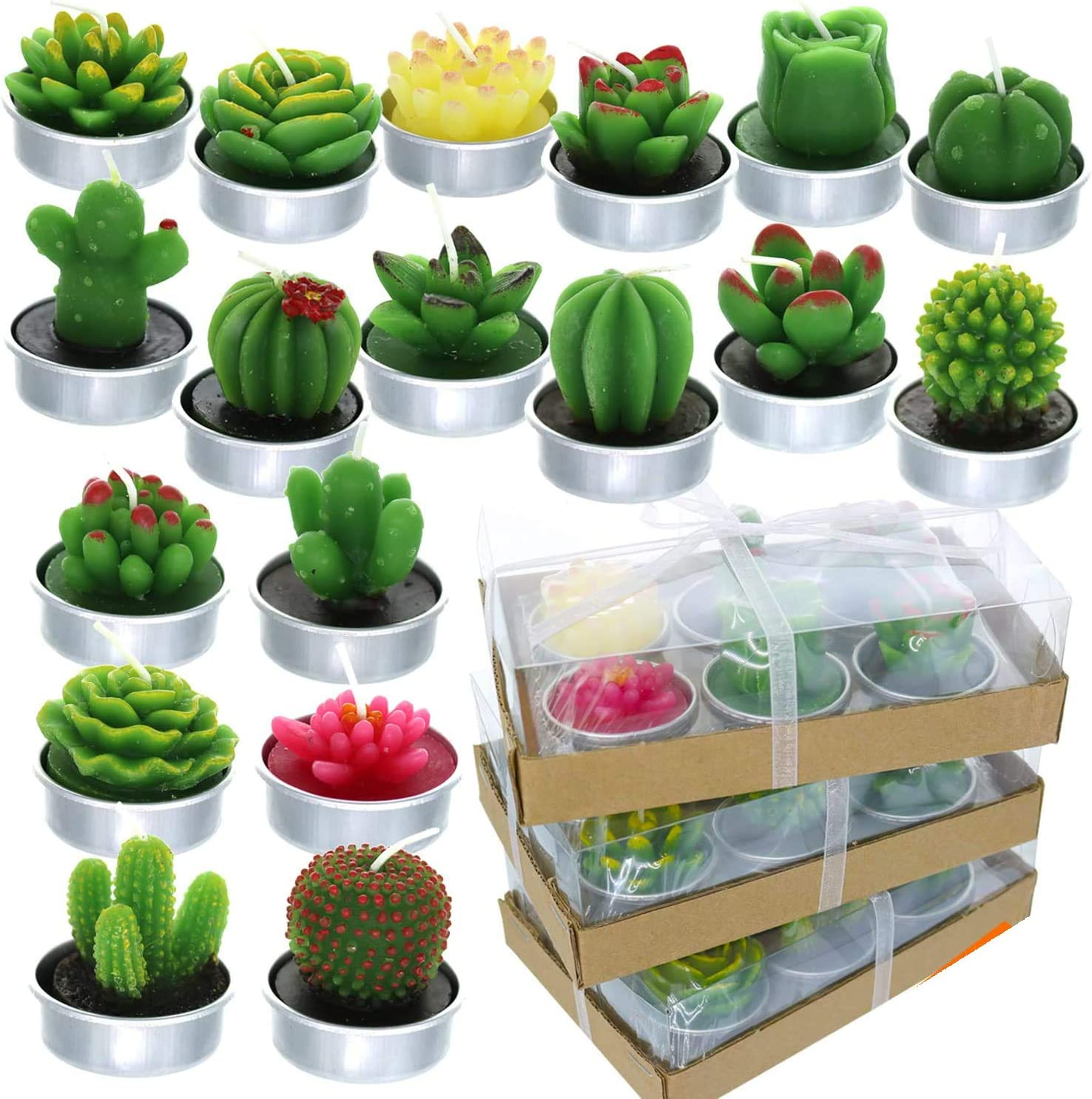 GIFTEXPRESS 18 Pcs Succulent Cactus Del Repeat Style No Max 75% OFF Candles Indianapolis Mall