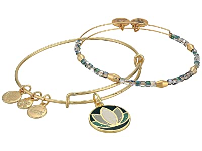 Alex and Ani Color Infusion Lotus II Set of 2 Bangle (Shiny Gold) Bracelet