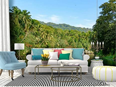 Amazon Com Wall Mural Loboc River In Philippines Bohol Island Mountain Lake Animals Stock Peel And Stick Wallpaper Self Adhesive Wallpaper Large Wall Sticker Removable Vinyl Film Roll Shelf Paper Home Decor Home