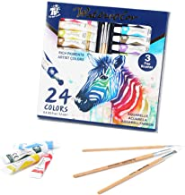 TBC The Best Crafts, Watercolor Paint Set, 24 Watercolor Tubes(0.4oz/12ml), Professional Water Color Pigment for Painting