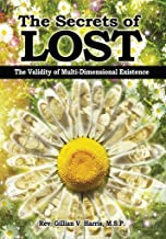 The Secrets of Lost: The Validity of Multi-Dimensional Existence
