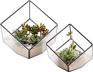 ElegantLife Succulent Terrarium, Geometric Decorative Cubic Moss Glass Leak Proof Pot Tabletop Flower Plant Box Planter Gold 2 Different Size Set Black (No Plant Included)