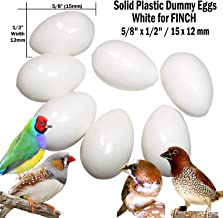 DummyEggs Finch Stop Laying! Fake Bird Eggs White Solid Plastic Realistic - 5/8