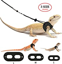 Best are superworms good for bearded dragons Reviews