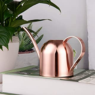 IMEEA 15oz/450ml Mini Watering Can Indoor for Kids House Desk Office Plants Bonsai Stainless Steel (Rose Gold)