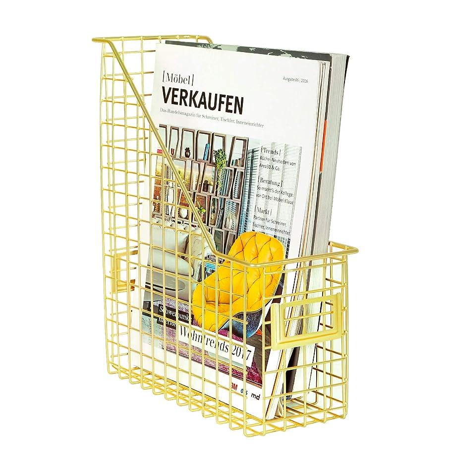 DESIGNA Grid Wire Magazine File Holder, Office Desk Document Letter Organizer, Gold