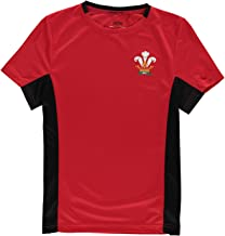 junior wales rugby shirt