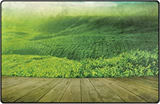 JOSENI Non-Slip Area Rugs Wood Platform Landscape View of Tea Plantation with Blue Sky in Morning Print Floor Mat Living Room Bedroom Dinning Kitchen Carpets Doormats