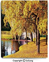 Home Decoration Painting Wall Mural Beautiful Autumn Forest in City Park Saint Petersburg Russia Rural Scenic Living Room Dining Room Studying Aisle Painting,12x18inches Yellow Brown Green
