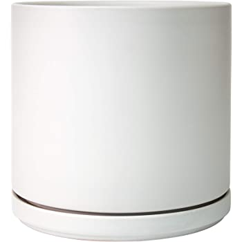 Ceramic Planter Pot with Drainage Hole and Saucer, Indoor Cylinder Round Planter Pot, 8 Inch, White