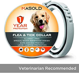 MASOLD Dog Flea and Tick Control Collar - 12 Months Flea and Tick Control for Dogs - Natural, Herbal, Non-Toxic Dog Flea Treatment - Adjustable [Upgrade Version]