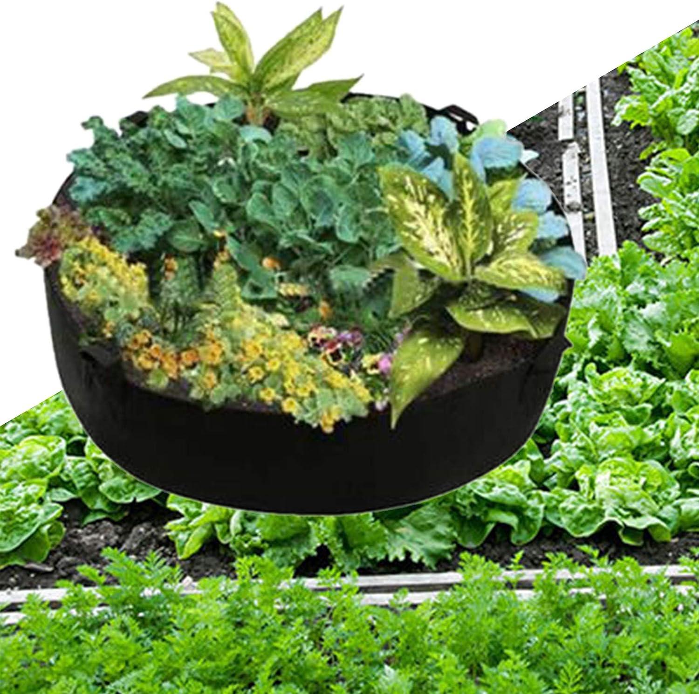Contenitore per Piantare Buona Tenacit/à Borsa per Piantagione Pratica Ad Alta capacit/à Resistente allUsura per Frutta L Un Jiacheng29/_ Sacco per Piantare