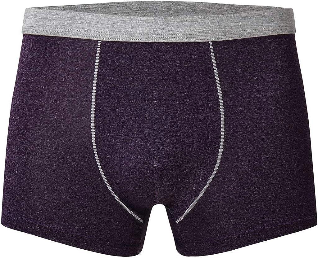 Gergeos Men's Summer Ice Silk Boxer Briefs Breathable Fashion Comfortable Shorts Underpants Underwear