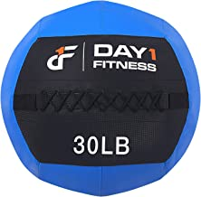 Day 1 Fitness Blue Soft Wall Medicine Ball 30 Pounds