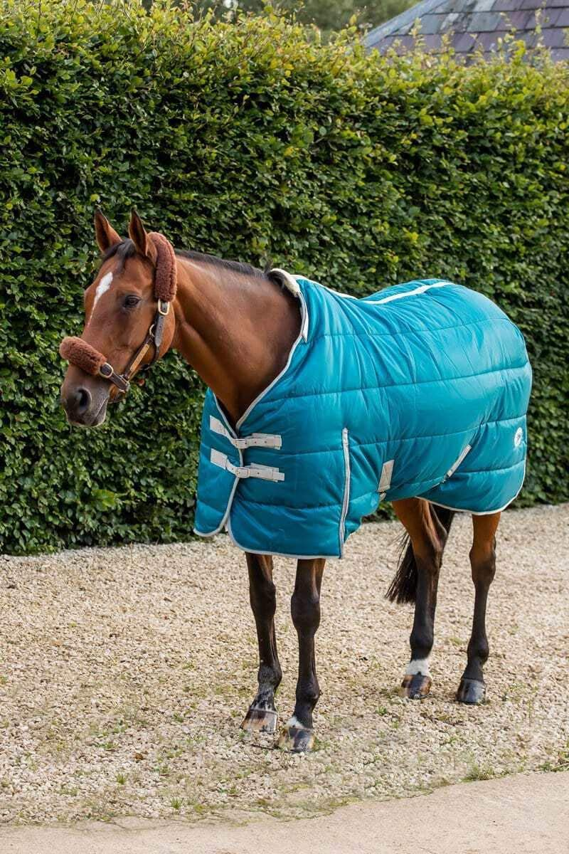 New Horse Pony Rug With Neck And Tail Wrap Detachable