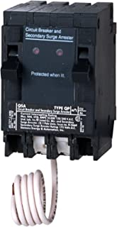 Siemens QSA1515SPD Whole House Surge Protection with Two 15-Amp Circuit Breakers for Use Only on Siemens Panels