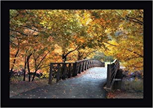 Autumn Overpass by Jessica Jenney 20