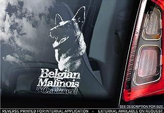 Suchergebnis Auf Für Malinois Aufkleber Merchandiseprodukte Auto Motorrad