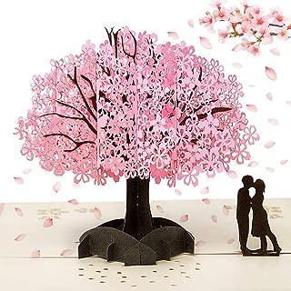 marito moglie 15 biglietti Unico romantico regalo di San Valentino Natale o compleanno fidanzato o coppia Bliss Collections Love Coupon per lui o lei