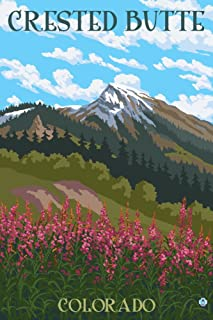 Crested Butte, Colorado - Fireweed and Mountain (9x12 Art Print, Wall Decor Travel Poster)